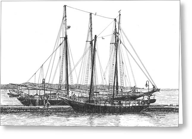 Historic Schooner Greeting Cards - Schooners on the York River Greeting Card by Stephany Elsworth