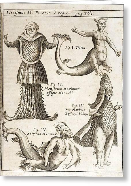 Monstrosity Greeting Cards - Schott Sea Monsters And Mermaids, 1662 Greeting Card by Paul D. Stewart