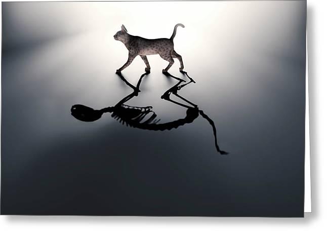 Schrodinger's Cat Greeting Card by Andrzej Wojcicki