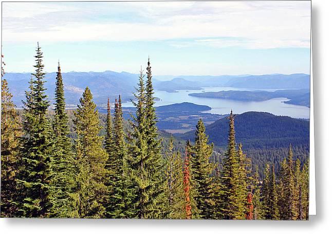 Schweitzer Greeting Cards - Schweitzer Mountain 7 Greeting Card by Ellen Tully
