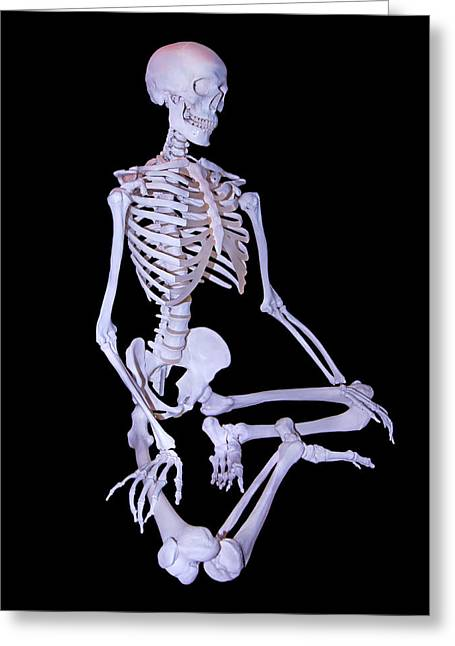 Mandible Greeting Cards - Scientific Sam Greeting Card by Betsy C  Knapp