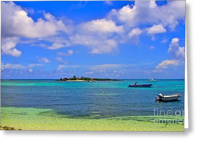 Jennifer Lamanca Kaufman Greeting Cards - Scilly Cay Anguilla Greeting Card by Jennifer Lamanca Kaufman