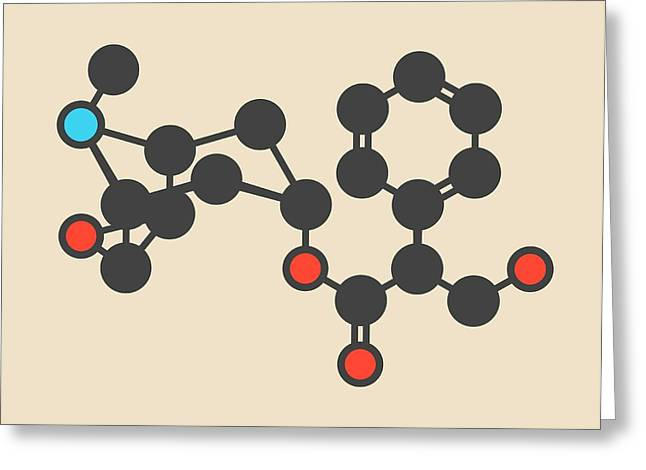 Scopolamine Drug Molecule Greeting Card by Molekuul