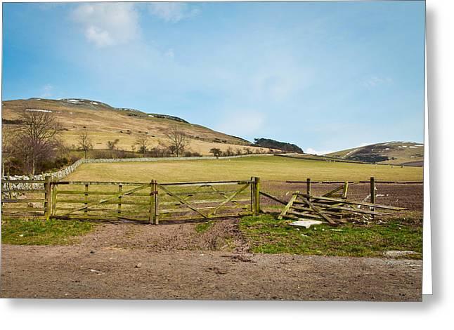 Border Photographs Greeting Cards - Scotland farm Greeting Card by Tom Gowanlock