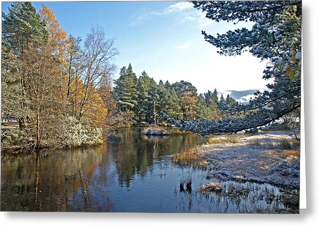 Highlands Of Scotland Greeting Cards - Scottish Loch Near Aviemore Greeting Card by Gill Billington
