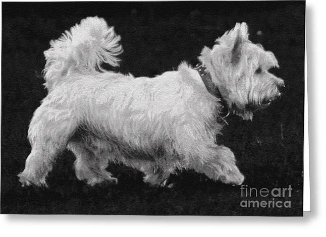 Toy Dog Greeting Cards - West Highland Terrier Greeting Card by Cassandra Buckley