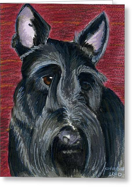 Scottish Terrier Puppy Greeting Cards - Scottish Terrier Greeting Card by Christine Winship