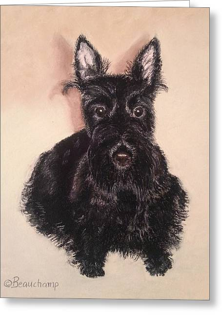 Scottish Terriers Pastels Greeting Cards - Scottish Terrier Greeting Card by Nancy Beauchamp