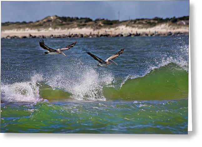 Scouting For A Catch Greeting Card by Betsy C Knapp