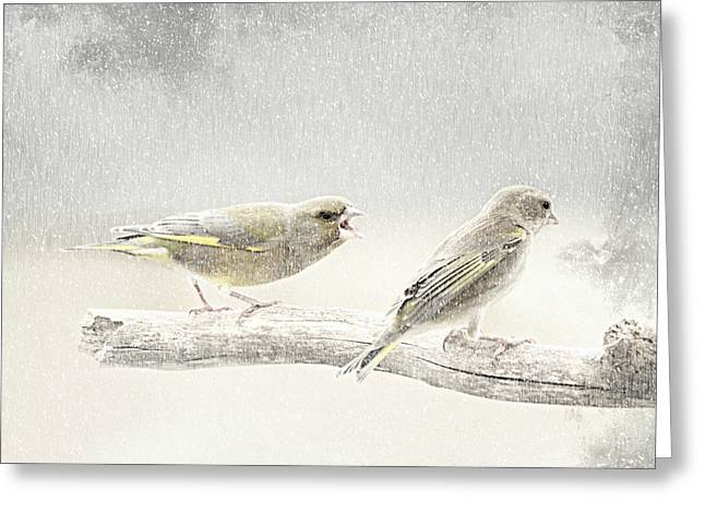 Winter Photos Mixed Media Greeting Cards - Screamers In The Snow Greeting Card by Heike Hultsch