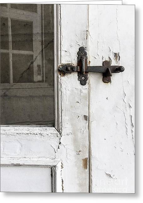 Screen Doors Greeting Cards - Screen Greeting Card by Margie Hurwich