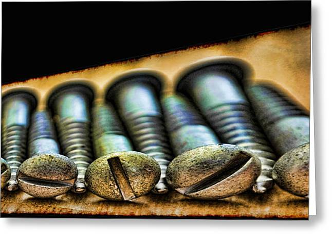 Wall Art For Your Home Or Office Greeting Cards - Screws all lined up 2 Greeting Card by Debbie Portwood