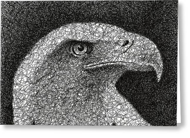 Raptor Drawings Greeting Cards - Scribble Eagle Greeting Card by Nathan Shegrud