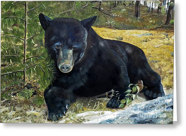 Alertness Paintings Greeting Cards - Scruffy - Black Bear - unsigned Greeting Card by Jan Dappen