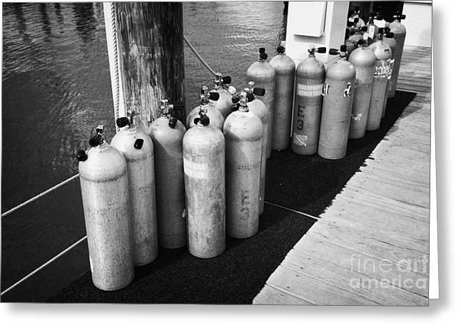 Underwater Breathing Greeting Cards - Scuba Air Tanks Lined Up On Jetty To Be Filled In Harbour Key West Florida Usa Greeting Card by Joe Fox