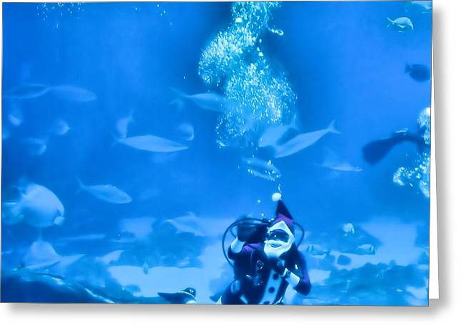 Recently Sold -  - Christmas Eve Greeting Cards - Scuba Santa Greeting Card by Dan Sproul