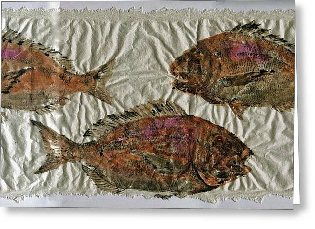 Gyotaku Greeting Cards - Scup on Rice Paper Greeting Card by Jeffrey Canha