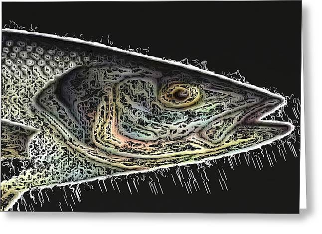 Bass Fish Mixed Media Greeting Cards - Sea Bass Greeting Card by Chris Fulks
