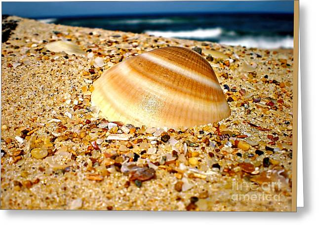 Sand Art Greeting Cards - Sea beyond the Shell Greeting Card by Kaye Menner