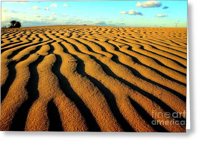Arie Arik Chen Greeting Cards - Sea Dune Greeting Card by Arie Arik Chen