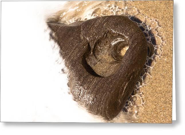 Heart Rocks Greeting Cards - Sea Foam Heart Greeting Card by John Daly