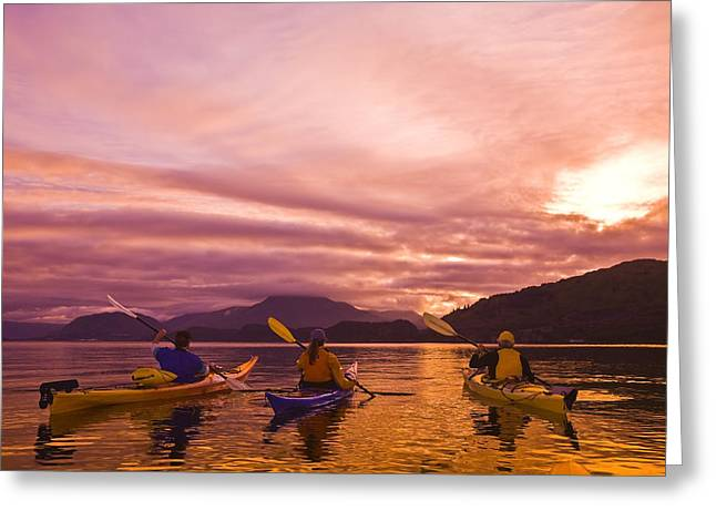 Kodiak Greeting Cards - Sea Kayakers Paddle Around Near Island Greeting Card by Michael DeYoung