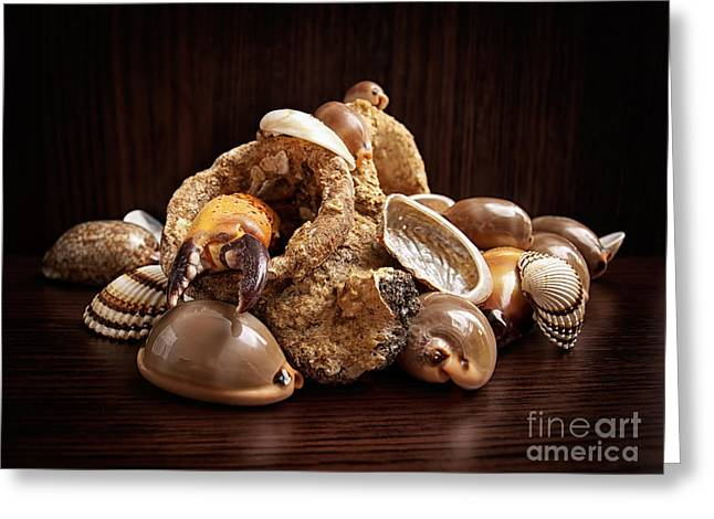 Leftovers Greeting Cards - Sea leftovers Greeting Card by Sinisa Botas