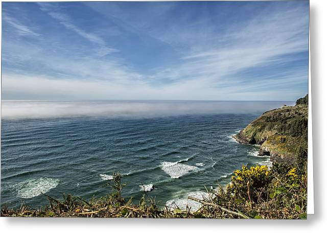 Ocean Photography Greeting Cards - Sea Lion Caves Along the Oregon Coast Greeting Card by Belinda Greb