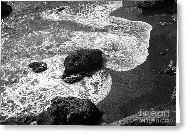 Point Lobos Reserve Greeting Cards - Sea Lion Cove Greeting Card by James B Toy