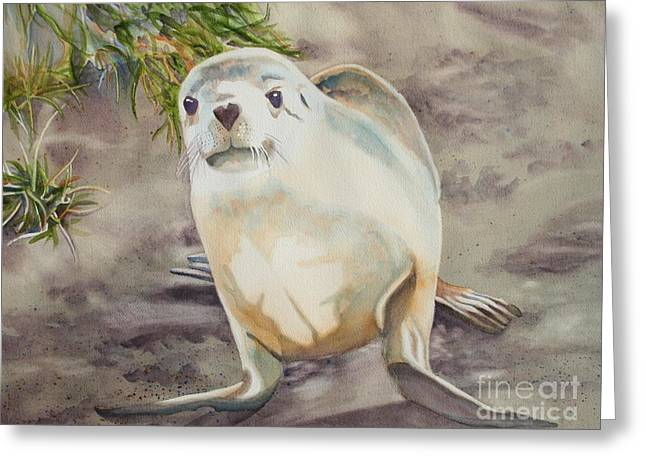 Sea Lions Paintings Greeting Cards - Sea Lion pup Greeting Card by Amanda Schuster