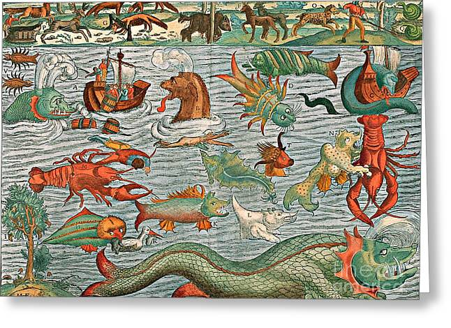 Marine Creatures Greeting Cards - Sea Monsters 1544 Greeting Card by Photo Researchers