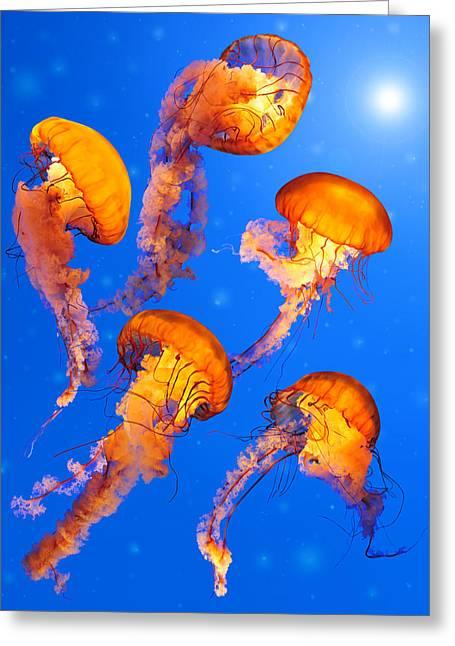 Medusa Greeting Cards - Sea Nettle Dancing Lanterns II Greeting Card by Edwin Verin