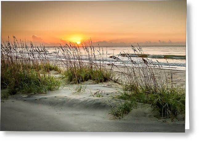 Sea Oat Islands Greeting Card by Steve DuPree