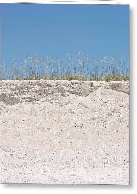 Sanddunes Greeting Cards - Sea Oat Love Greeting Card by May Photography