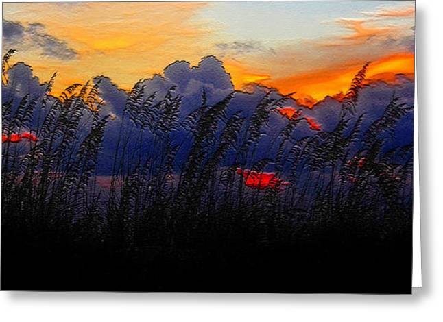 Oats Digital Greeting Cards - Sea Oat Sunset Greeting Card by David Lee Thompson
