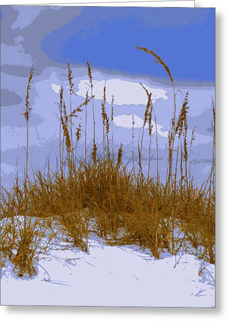 Florida Panhandle Digital Art Greeting Cards - Sea Oats agaist a blue sky Greeting Card by Laurie Pike