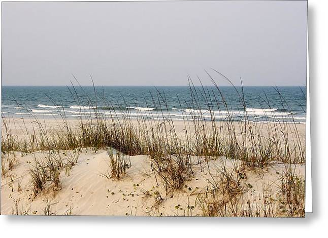 Best Ocean Photography Greeting Cards - Sea Oats By The Ocean Greeting Card by D Hackett
