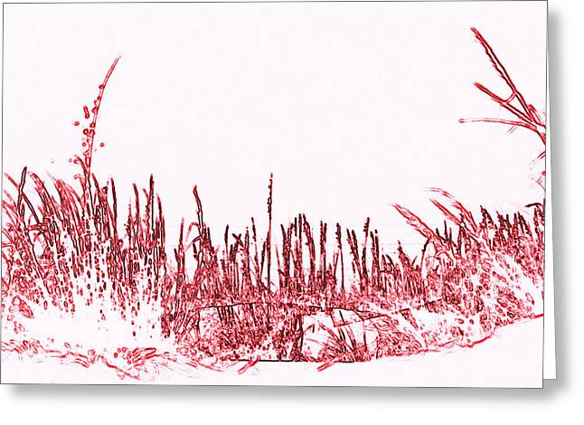 Florida Panhandle Digital Art Greeting Cards - Sea Oats in Red Greeting Card by Laurie Pike
