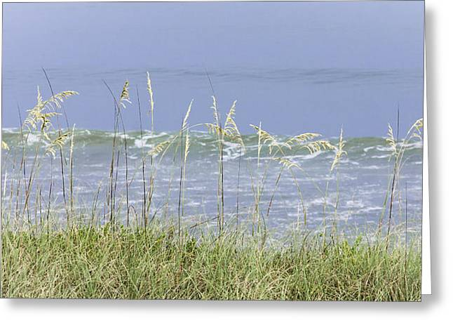 Sea Oats Panorama 1 Greeting Card by Karen Stephenson