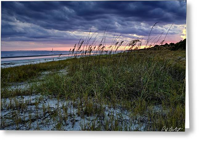 Oats Digital Greeting Cards - Sea Oats Greeting Card by Phill  Doherty