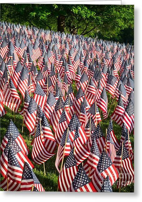 Charles River Greeting Cards - Sea of Flags Greeting Card by Inge Johnsson