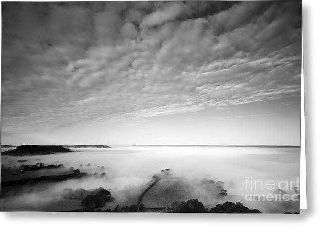 Cam Greeting Cards - Sea of Fog Greeting Card by Anne Gilbert