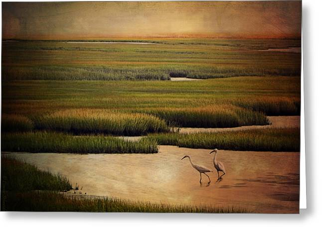 Sea Of Grass Greeting Card by Lianne Schneider