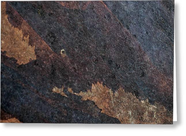 Sea of Rust Greeting Card by Fran Riley