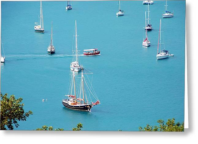 Blue Sailboats Greeting Cards - Sea of Sailboats Greeting Card by Aimee L Maher Photography and Art
