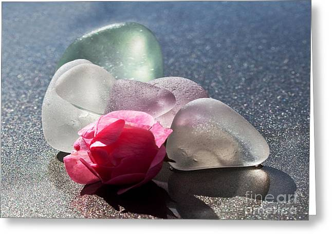 Flower Still Life Glass Art Greeting Cards - Sea Rose Greeting Card by Barbara McMahon