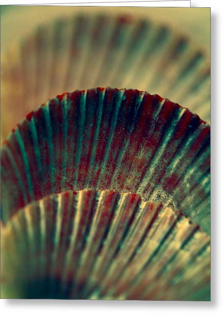 Shell Pattern Greeting Cards - Sea Shell Art 2 Greeting Card by Bonnie Bruno