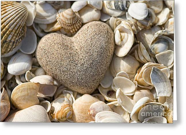 Power Pyrography Greeting Cards - sea shell Heart Greeting Card by Boon Mee