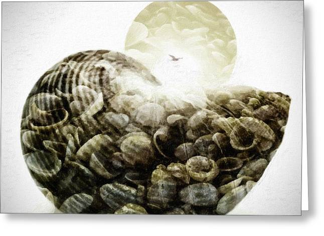 Seastar Mixed Media Greeting Cards - Sea shell in oil paint on canvas Greeting Card by Toppart Sweden