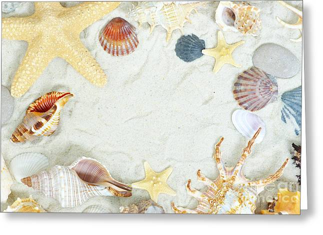 Large Clock Pyrography Greeting Cards - Sea Shells Greeting Card by Boon Mee